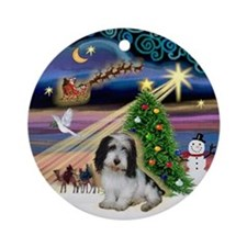 Xmas Magic & PBGV (2) Ornament (Round)