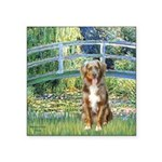 Bridge-Aussie Shep (#5) Square Sticker 3