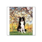 Spring & Border Collie Square Sticker 3