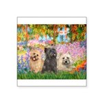 Garden/3 Cairn Terriers Square Sticker 3