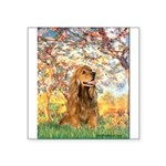 Spring /Cocker Spaniel (buff) Square Sticker 3