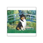 Bridge / Collie (tri) Square Sticker 3