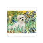 Irises / Coton Square Sticker 3