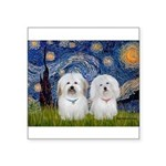 Starry / Coton Pair Square Sticker 3
