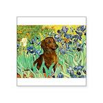 Irises & Dachshund Square Sticker 3