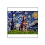 Starry / Red Doberman Square Sticker 3