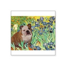 "Irises / 2 English Bulldogs Square Sticker 3"" x 3"""