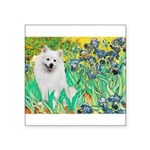 Irises / Eskimo Spitz #1 Square Sticker 3