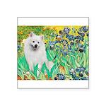 Irises / Eskimo Spitz #1 Square Sticker 3