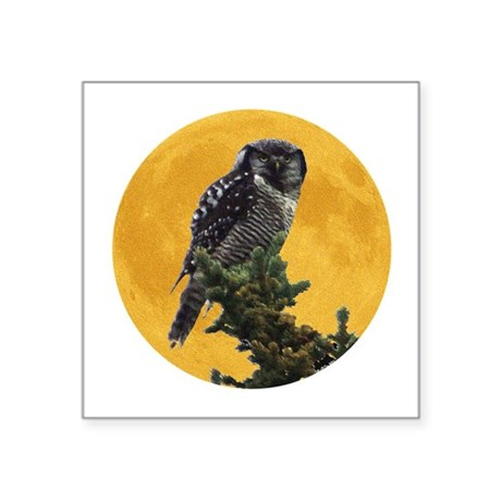 "owlmoon.png Square Sticker 3"" x 3"""
