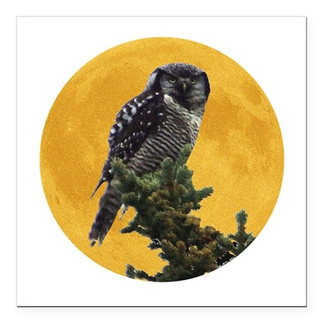 "owlmoon.png Square Car Magnet 3"" x 3"""