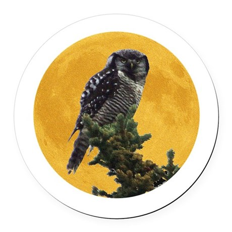 owlmoon.png Round Car Magnet