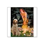 Fairies/ Italian Spinone Square Sticker 3