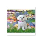 Lilies (2) & Maltese Square Sticker 3