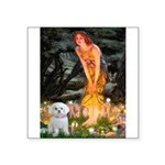 Fairies & Maltese Square Sticker 3
