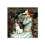 Ophelia / Rat Terrier Square Sticker 3