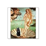 Venus / Schipperke #5 Square Sticker 3