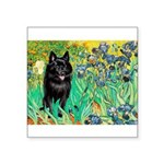 Irises / Schipperke #2 Square Sticker 3