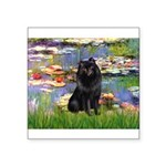 Lilies (2) & Schipperke Square Sticker 3