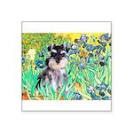 Irises / Miniature Schnauzer Square Sticker 3