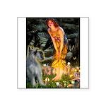 Fairies / G Schnauzer Square Sticker 3