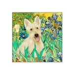 Irises / Scottie (w) Square Sticker 3