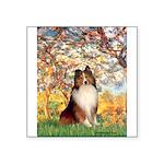 Spring / Sheltie (#1) Square Sticker 3