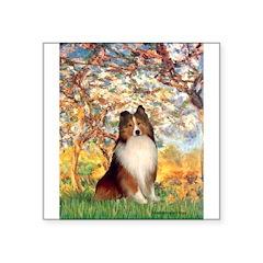 "Spring / Sheltie (#1) Square Sticker 3"" x 3"""