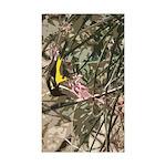 Starry - Shiba Inu (std) 5.25 x 5.25 Flat Cards