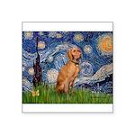 Starry Night / Vizsla Square Sticker 3