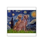 Starry / 2 Weimaraners Square Sticker 3