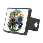StFrancis-ff-7 cats-BorderCollie.png Rectangular H