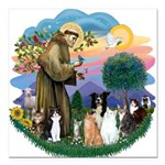 StFrancis-ff-7 cats-BorderCollie.png Square Car Ma