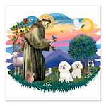 St Francis #2/ Bichon (2) Square Car Magnet 3