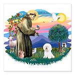 St Francis #2/ Bichon #1 Square Car Magnet 3