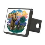 St Francis #2/ Bouvier Rectangular Hitch Cover