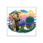 St.Francis #2/ Cavalier (bl) Square Sticker 3&quot