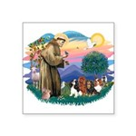 St Francis #2/ Cavaliers Square Sticker 3