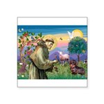 St Francis Doxie Square Sticker 3