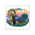 St Francis #2/ Doberman Square Sticker 3
