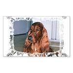 St.Francis #2/ Fox Terrier Jewelry Case
