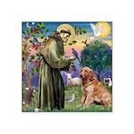 St Francis & Golden Square Sticker 3