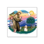 St.Francis #2/ Havanese(#1) Square Sticker 3""