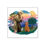 "St.Fran #2/ Poodle (Std-ap) Square Sticker 3"""