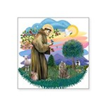 St. Fran (ff) - Norw. Forest Square Sticker 3&quot