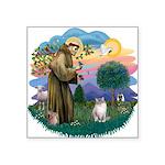 St. Fran (ff) - Ragdoll (Lynx Square Sticker 3&quo