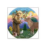R-St Francis-ShetlandPONY.png Square Sticker 3