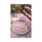 MonaLis-Anatolian Shep1 Diaper Cover
