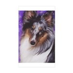 Starry - Tri Aussie Shep2 iPhone Wallet Case