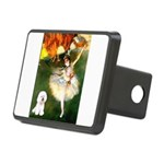 Ballet Dancer & Bichon Rectangular Hitch Cover